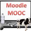 Moodle_Experience_2_Jun_2013_de7d827b